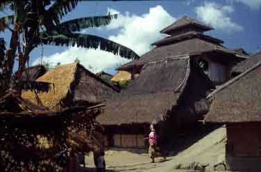 bayan_lombok